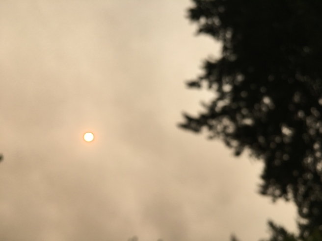 picture of sun in smoke